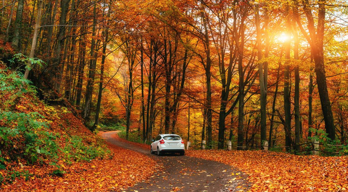 foto_jak_przygotowac_samochod_do_jesieni.1200