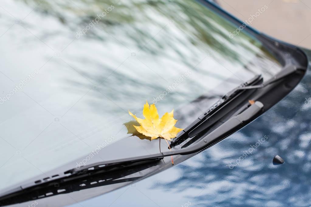 depositphotos_130189152-stock-photo-close-up-of-car-wipers