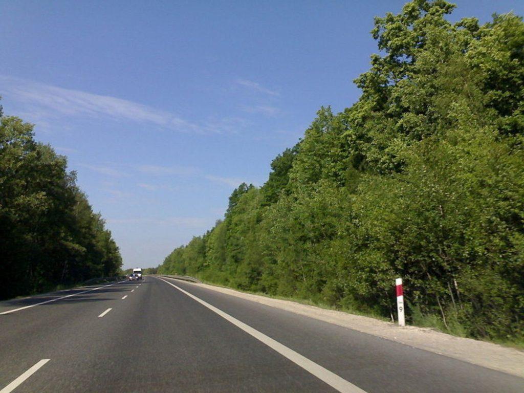droga asfaltowa na tle zielonych drzew